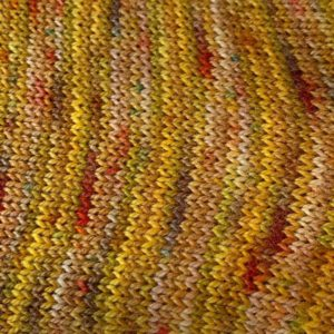 Hand Dyed Yarn Autumn Colours