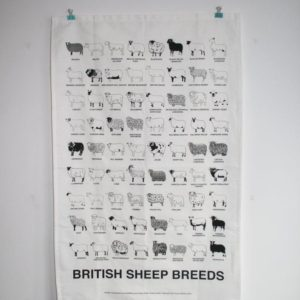 Sheep Breeds Tea Towel